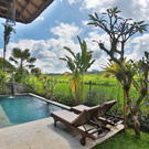 Live and work in Bali